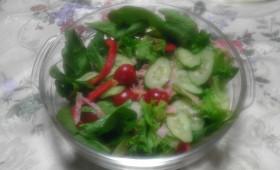 サラダほうれん草とフリルレタスの簡単サラダ